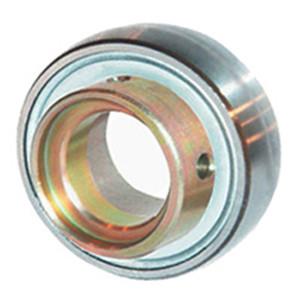 INA RAE12-NPP-B Insert Bearings Spherical OD