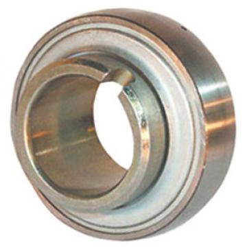 INA GLE45-KRR-B Insert Bearings Spherical OD
