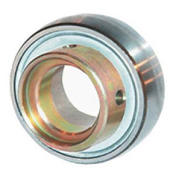 INA RAE50-NPP-B Insert Bearings Spherical OD