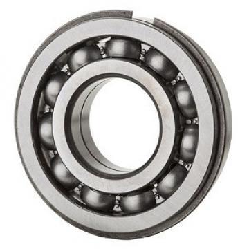 NSK 6007NR Single Row Ball Bearings