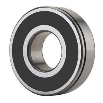 SKF 6211-RS2NBR/C3 Single Row Ball Bearings