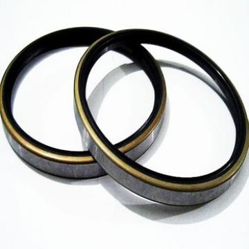 National Oil Seal Size Excavator Oil Seal DKB Rubber Metal Dust Seals For Engine